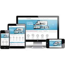 Professional Website Design Companies Johannesburg